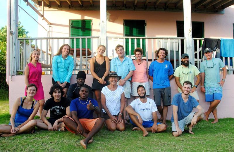 Bermuda Turtle Project October 2016 (1)