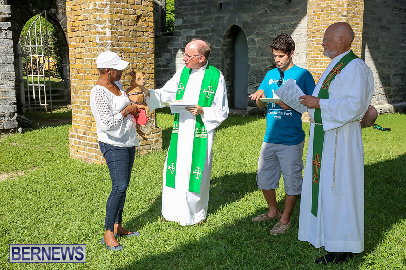 Blessing-Of-The-Animals-Bermuda-October-2-2016-47