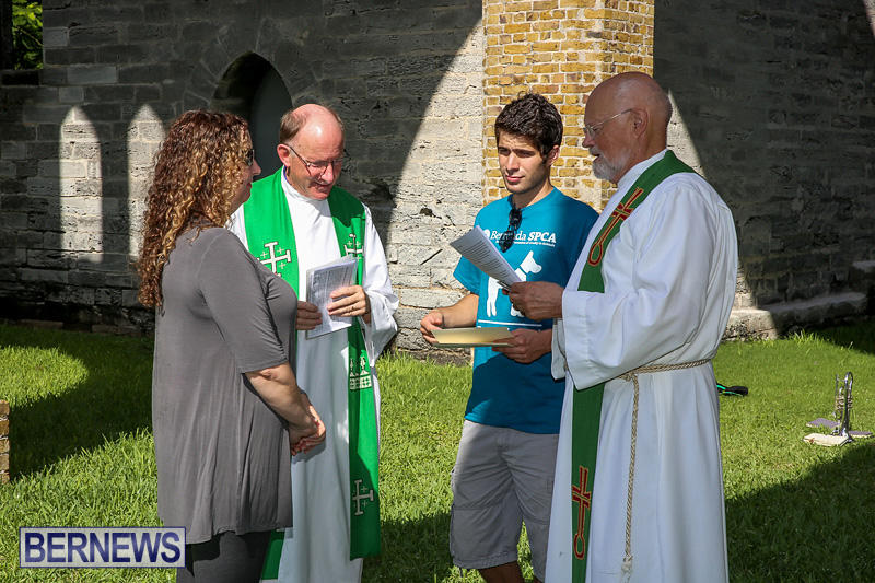 Blessing-Of-The-Animals-Bermuda-October-2-2016-59