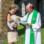 Blessing Of The Animals Bermuda, October 2 2016-60