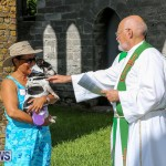 Blessing Of The Animals Bermuda, October 2 2016-63