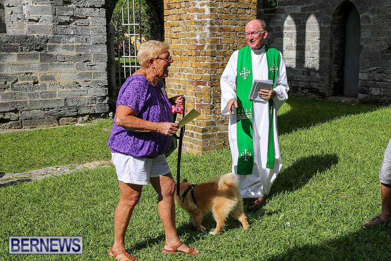 Blessing-Of-The-Animals-Bermuda-October-2-2016-68