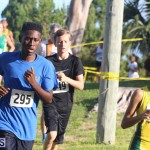 Cross Country Fort Scaur Race Bermuda Oct 8 2016 (8)