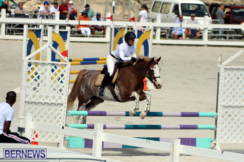 Equestrian-Bermuda-October-2016-4