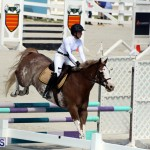 Equestrian Bermuda October 2016 (5)