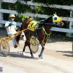 Harness Pony Racing Bermuda Oct 9 2016 (1)