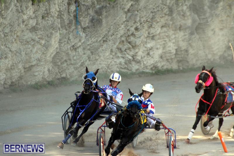 Harness-Pony-Racing-Bermuda-Oct-9-2016-12