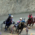 Harness Pony Racing Bermuda Oct 9 2016 (13)