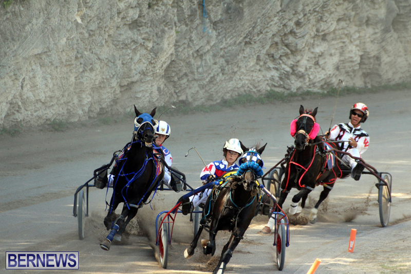 Harness-Pony-Racing-Bermuda-Oct-9-2016-13