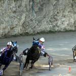 Harness Pony Racing Bermuda Oct 9 2016 (15)