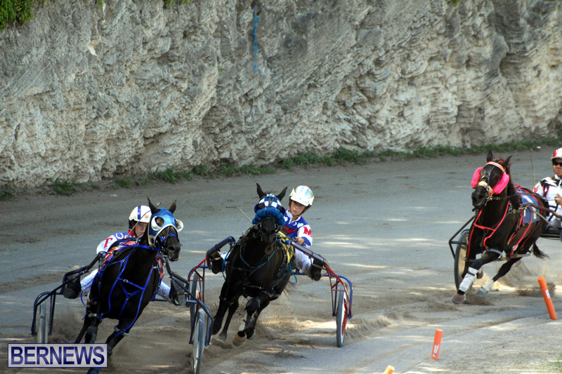 Harness-Pony-Racing-Bermuda-Oct-9-2016-15