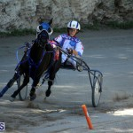 Harness Pony Racing Bermuda Oct 9 2016 (17)