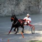Harness Pony Racing Bermuda Oct 9 2016 (6)