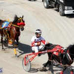 Harness Pony Racing Bermuda Oct 9 2016 (8)