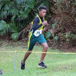 BNAA Swan's Cross Country Bermuda Nov 5 2016 (13)