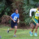 BNAA Swan's Cross Country Bermuda Nov 5 2016 (5)
