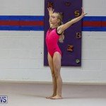 Bermuda Gymnastics, November 12 2016-1