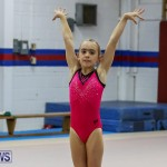 Bermuda Gymnastics, November 12 2016-10