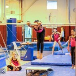 Bermuda Gymnastics, November 12 2016-11