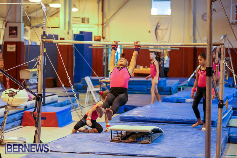 Bermuda-Gymnastics-November-12-2016-12
