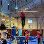 Bermuda Gymnastics, November 12 2016-14