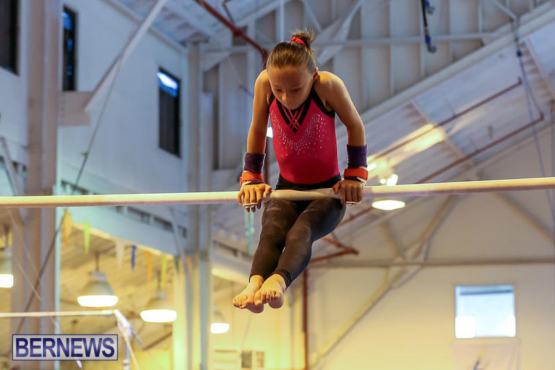 Bermuda-Gymnastics-November-12-2016-15