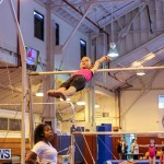 Bermuda Gymnastics, November 12 2016-17