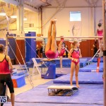 Bermuda Gymnastics, November 12 2016-18