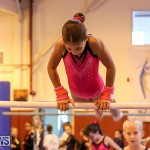 Bermuda Gymnastics, November 12 2016-19