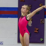 Bermuda Gymnastics, November 12 2016-2