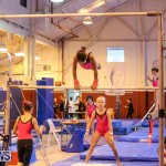 Bermuda Gymnastics, November 12 2016-20