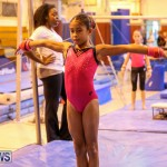 Bermuda Gymnastics, November 12 2016-22