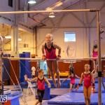 Bermuda Gymnastics, November 12 2016-25