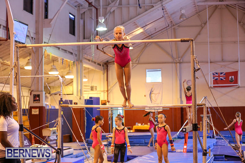 Bermuda-Gymnastics-November-12-2016-27