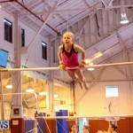 Bermuda Gymnastics, November 12 2016-28