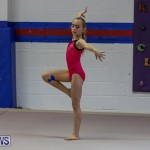 Bermuda Gymnastics, November 12 2016-3