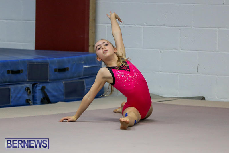 Bermuda-Gymnastics-November-12-2016-4