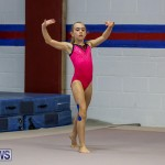 Bermuda Gymnastics, November 12 2016-5