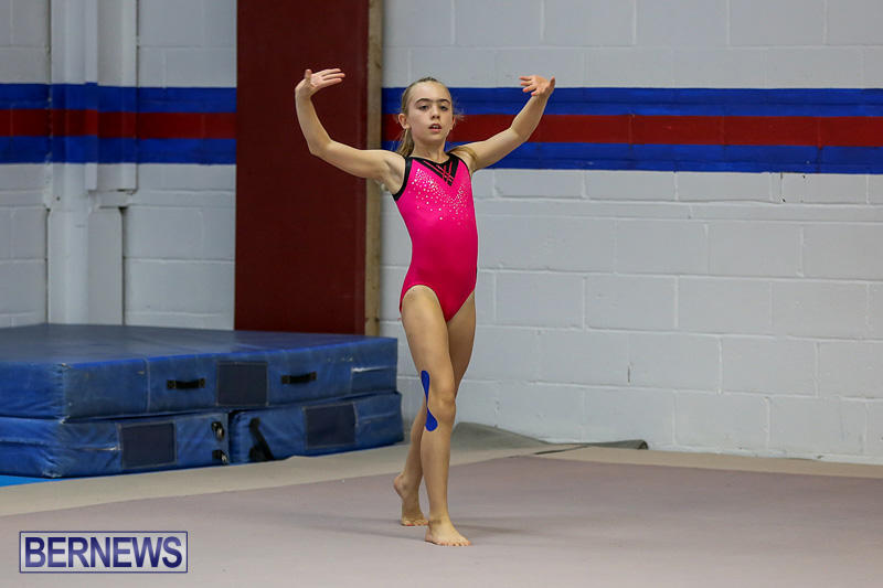 Bermuda-Gymnastics-November-12-2016-5