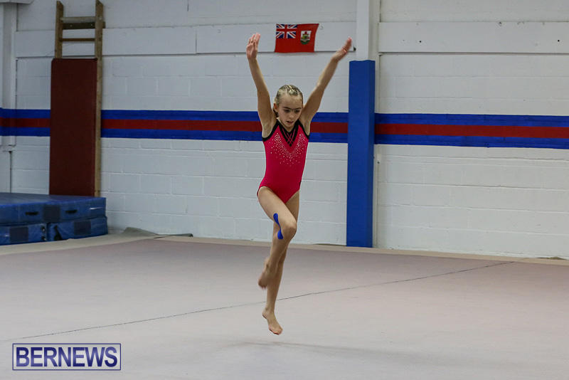 Bermuda-Gymnastics-November-12-2016-6
