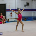Bermuda Gymnastics, November 12 2016-7