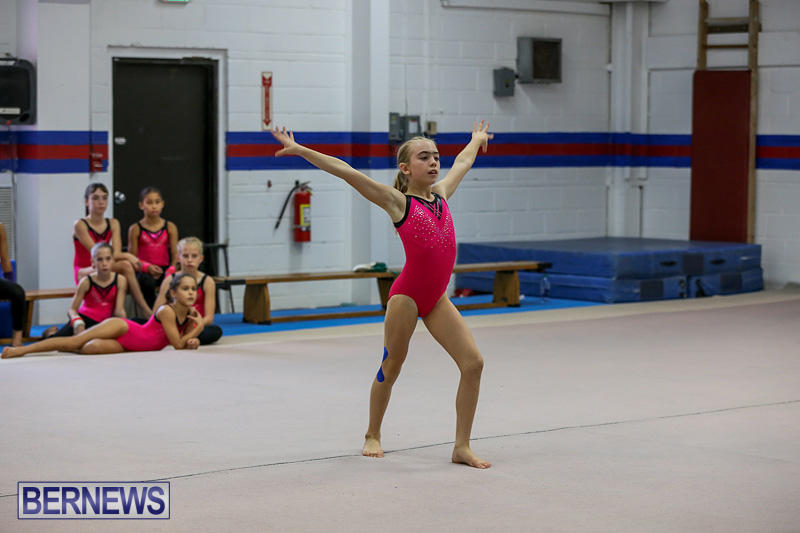 Bermuda-Gymnastics-November-12-2016-7