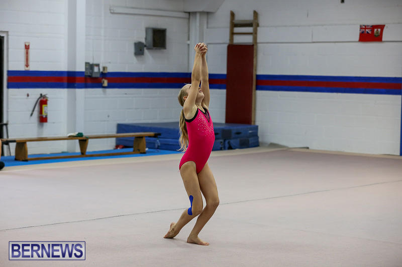 Bermuda-Gymnastics-November-12-2016-8