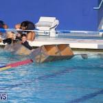 Cardboard Boat Challenge Bermuda, November 18 2016-109