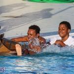 Cardboard Boat Challenge Bermuda, November 18 2016-117
