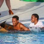 Cardboard Boat Challenge Bermuda, November 18 2016-118