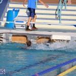 Cardboard Boat Challenge Bermuda, November 18 2016-124