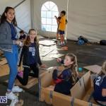 Cardboard Boat Challenge Bermuda, November 18 2016-20