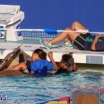 Cardboard Boat Challenge Bermuda, November 18 2016-59