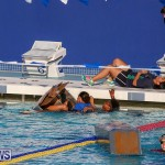 Cardboard Boat Challenge Bermuda, November 18 2016-61